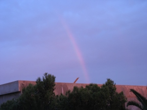 a morning rainbow in our neighborhood [Not the one I saw last week]
