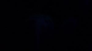 dark 002